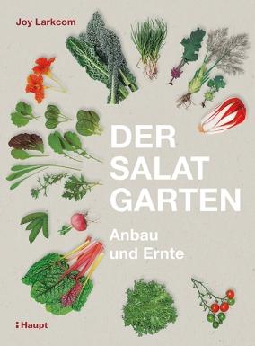 salatgarten.jpg